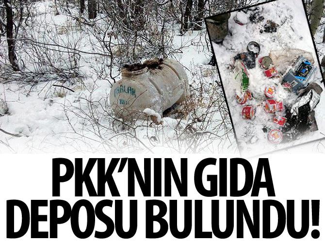 BİNGÖL'DE PKK'NIN GIDA DEPOSU BULUNDU