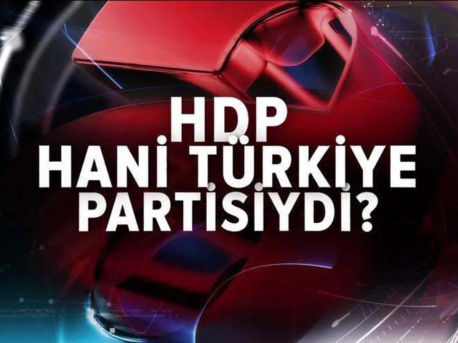 HDP HANİ TÜRKİYE PARTİSİYDİ?