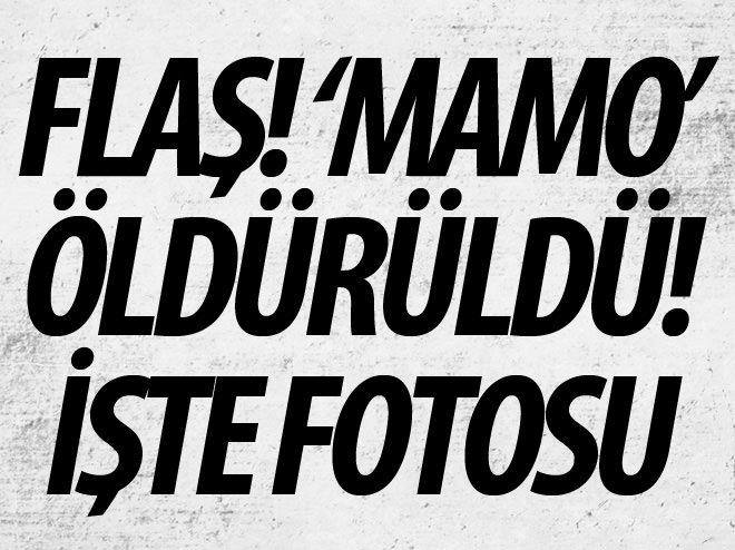 PKK'LI ELEBAŞI MAMO CİZRE'DE ÖLDÜRÜLDÜ