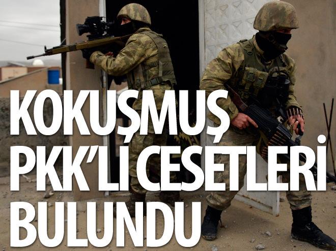 KOKUŞMUŞ PKK'LI CESETLERİ BULUNDU