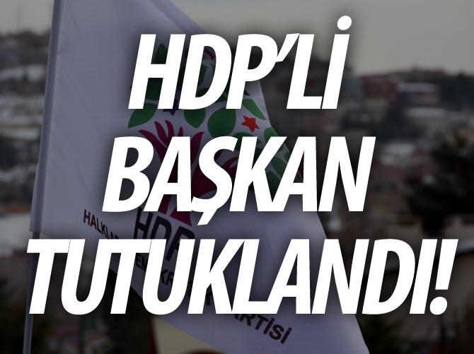HDP'Lİ BAŞKAN TUTUKLANDI!