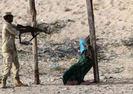 SOMALİ'DEKİ ŞİDDET OLAYLARI