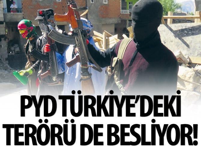 PYD TÜRKİYE'DEKİ TERÖRÜ DE BESLİYOR