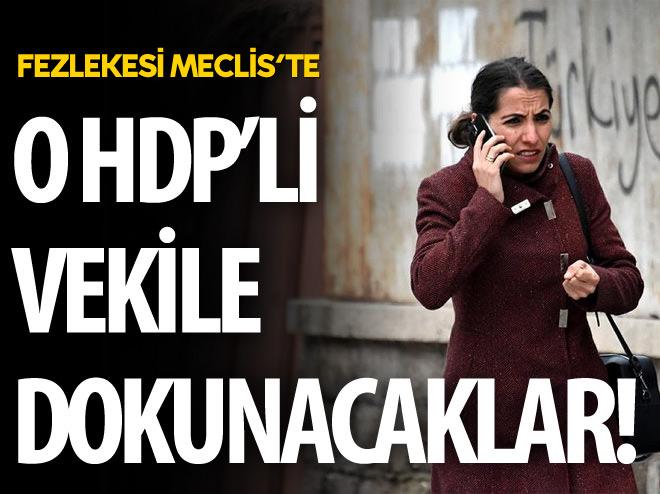 O HDP'Lİ VEKİLİN FEZLEKESİ MECLİS'TE