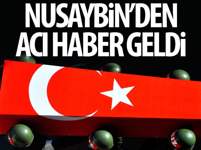 NUSAYBİN'DE TERÖR SALDIRISI