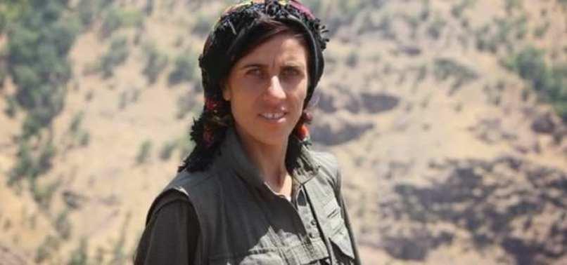 PKK'NIN YPS'Lİ LİDERİ ÖLDÜRÜLDÜ