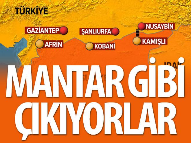 NUSAYBİN'DE PKK'NIN SİLAH STOĞU NİYE BİTMİYOR?