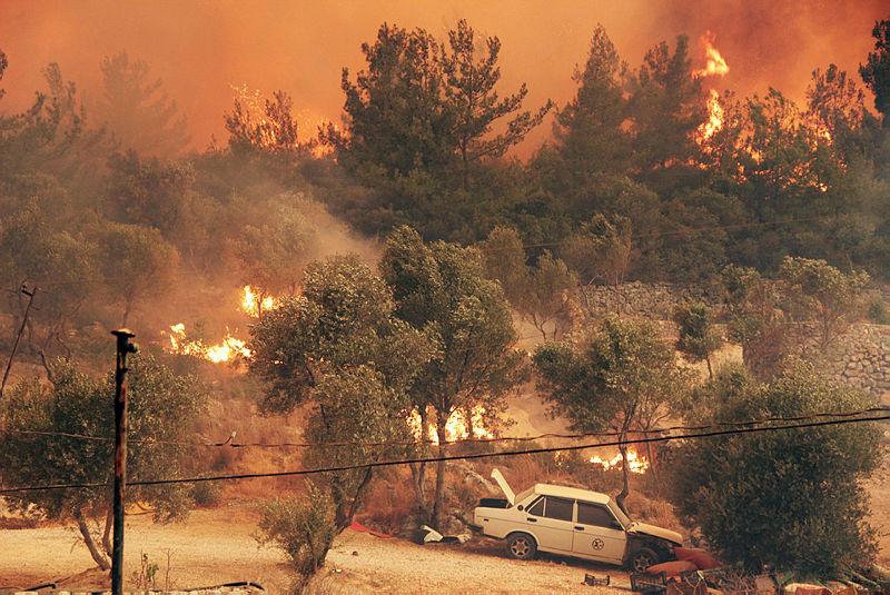 Son dakika | Çevre ve Şehircilik Bakanı Bakanı Murat Kurumdan orman yangınlarıyla ilgili flaş açıklama