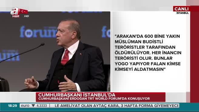 Erdoğan'a THY neden Somali'ye uçuyor sorusu