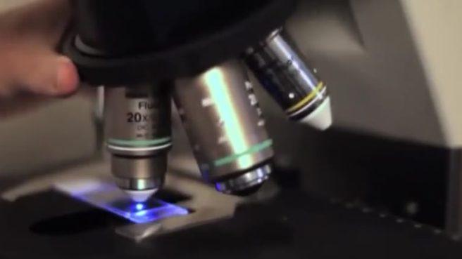 Bilim insanlarından korkutan açıklama! Kanser bulaşıcı mı?