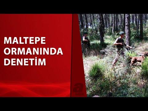 Maltepe polisinden orman yangınlarına karşı denetim
